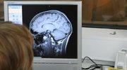 Biorytmy umysłu