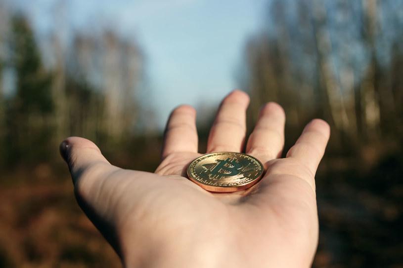 Bitcoin, czyli inwestowanie nie dla każdego /123RF/PICSEL