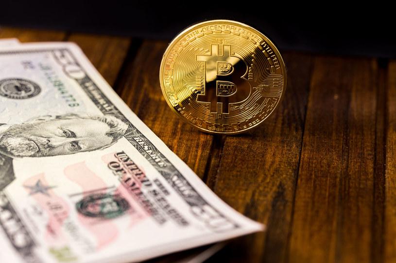Bitcoin może być trzy razy droższy /©123RF/PICSEL