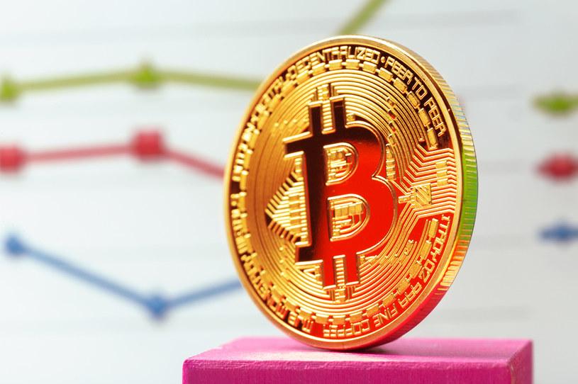 Bitcoin wraca do łask /123RF/PICSEL