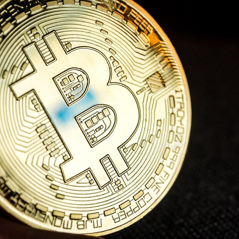 Bitcoin zniknie tak, jak Trump zniknął z internetu? /123RF/PICSEL