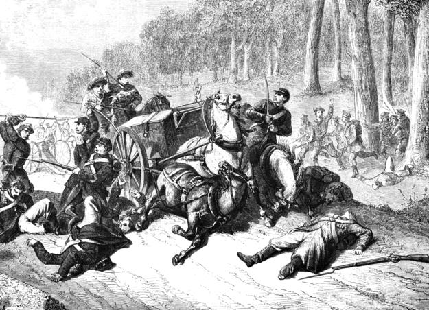 Bitwa pod Żyrzynem /domena publiczna