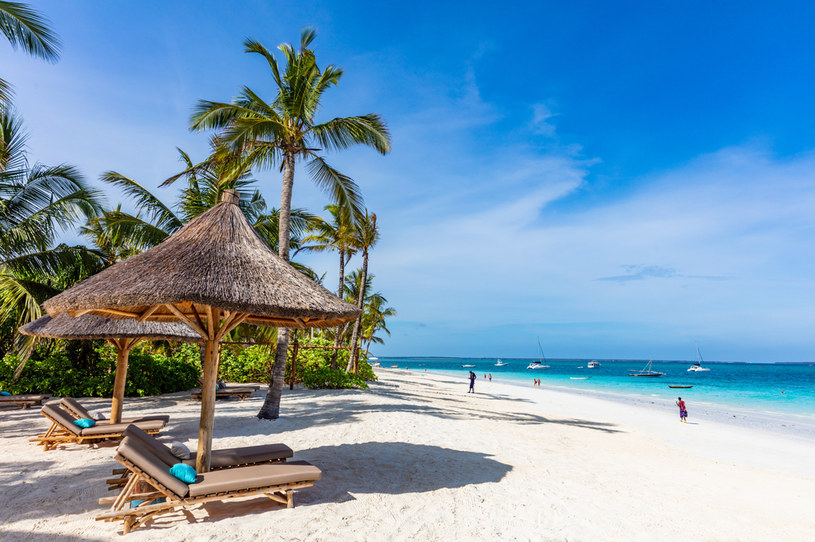 Biura podróży przygotowały wiele ofert na wakacje na Zanzibarze. To najmodniejszy kierunek w tym roku /Picsel /123RF/PICSEL