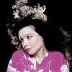 Björk: Koncert, którego nie było