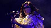 Björk złamała prawo