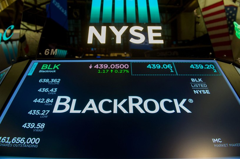 Black Rock to największy na świecie fundusz zarządzający inwestycjami /AFP