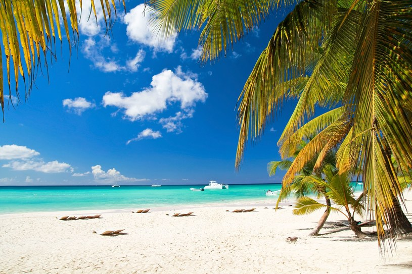 Błękit oceanu na Bahamach /123RF/PICSEL