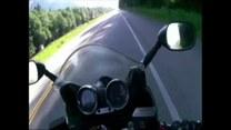 Bliskie spotkanie motocyklisty z misiem