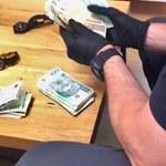 Blisko 300 mln zł strat Skarbu Państwa. Rozbita grupa nielegalnie handlująca suszem tytoniowym