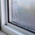 Blisko 84 mln Europejczyków mieszka w zagrzybionych i wilgotnych domach