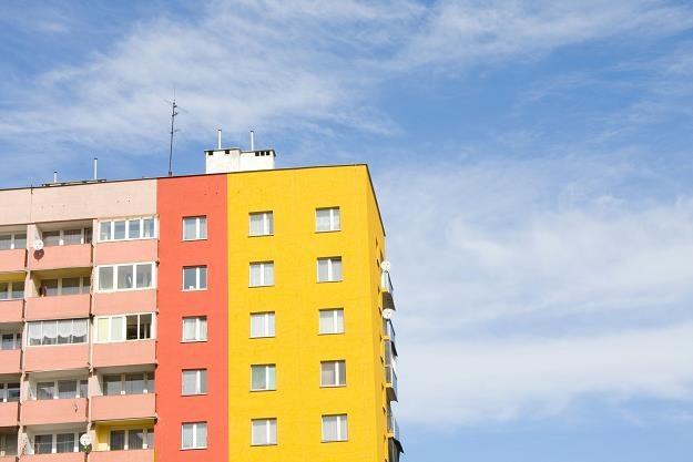 Bloki z wielkiej płyty są zazwyczaj dobrze zlokalizowane /©123RF/PICSEL