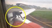 Boeing 737: Start wstrzymany, na skrzydle znajdował się człowiek!