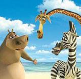 "Bohaterowie filmu ""Madagaskar"" /INTERIA.PL"