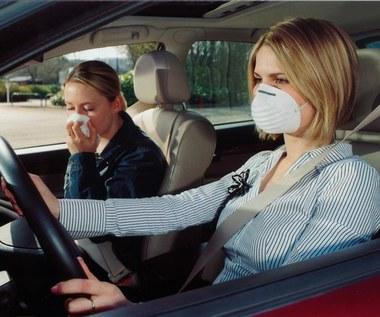 Boisz się smogu? Oto tani i skuteczny sposób!