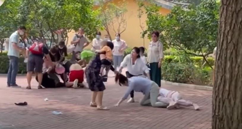 Bójka w Parku Dzikiej Przyrody w Pekinie /Taiwan English News /YouTube