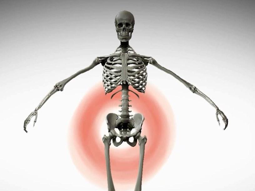 Bólowi kręgosłupa można zapobiec... /INTERIA.PL