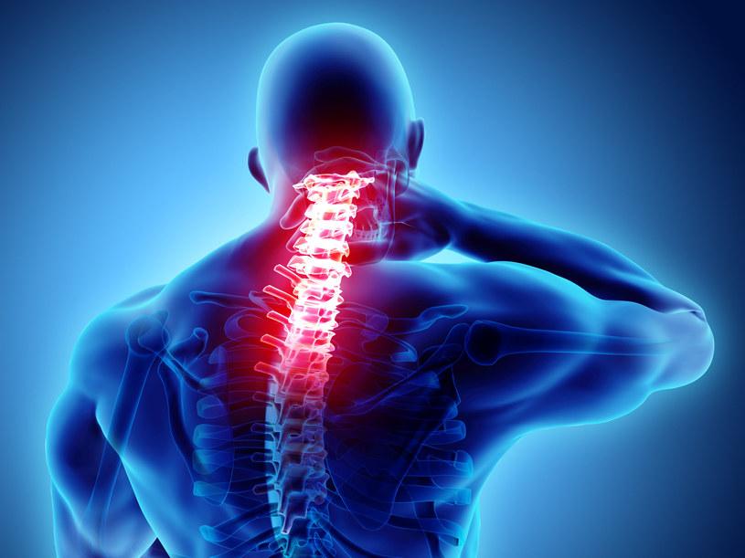 Bólu pleców nie wyleczymy tabletkami. Konieczne są rozwiązania wymagające większego wysiłki - także tego fizycznego /123RF/PICSEL