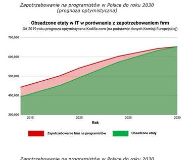 Boom na programistów w Polsce - wolnych 50 tys. wakatów