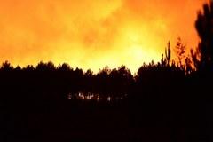 Bordeaux: Płonie 300 hektarów lasu