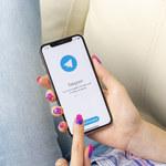 Bot na Telegramie sprzedaje numery telefonów użytkowników