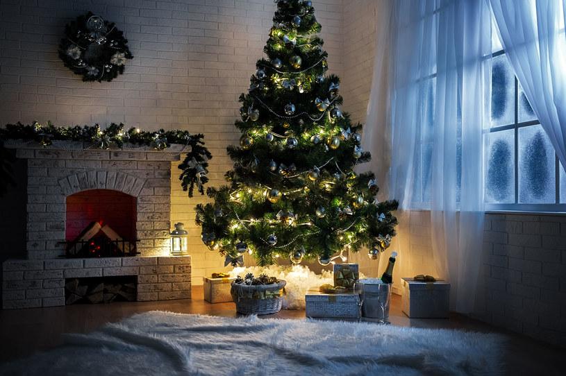 Bożonarodzeniowa choinka /123RF/PICSEL