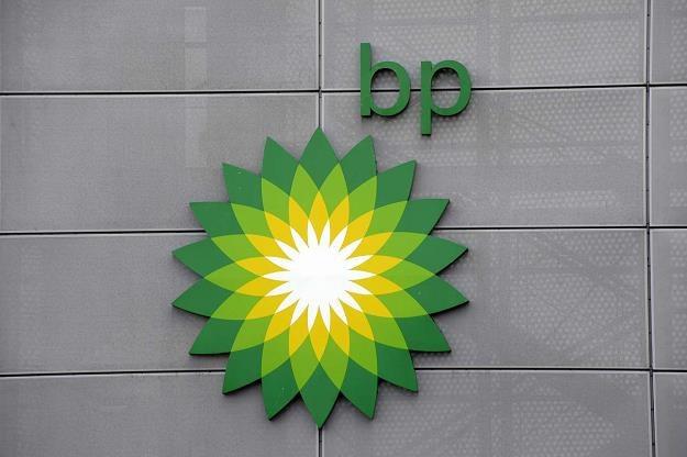 BP, mimo redukcji na świecie, potwierdza plany rozwoju w Polsce /AFP