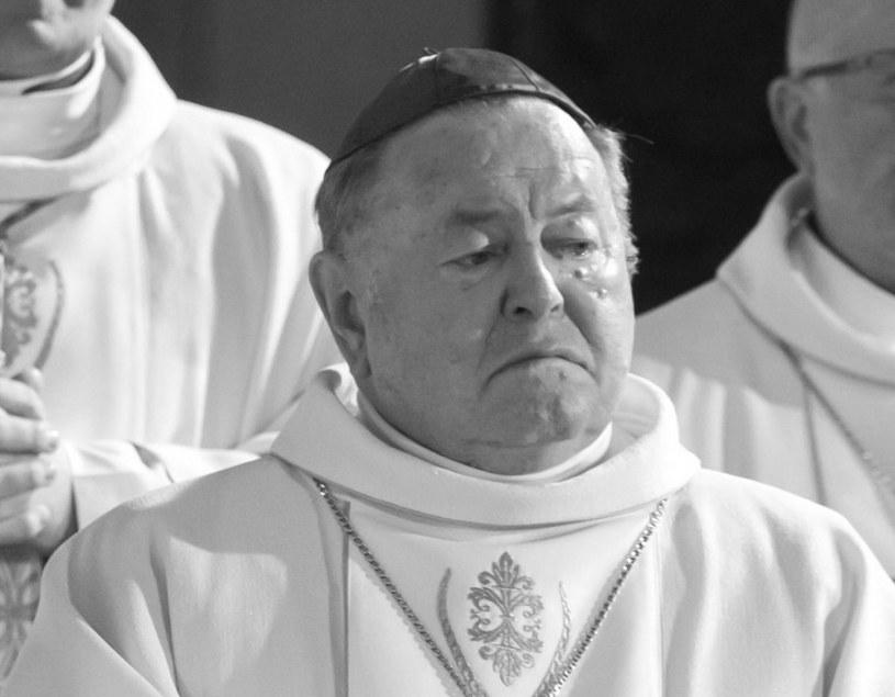 Bp senior Bogdan Wojtuś /Dawid Tatarkiewicz /East News