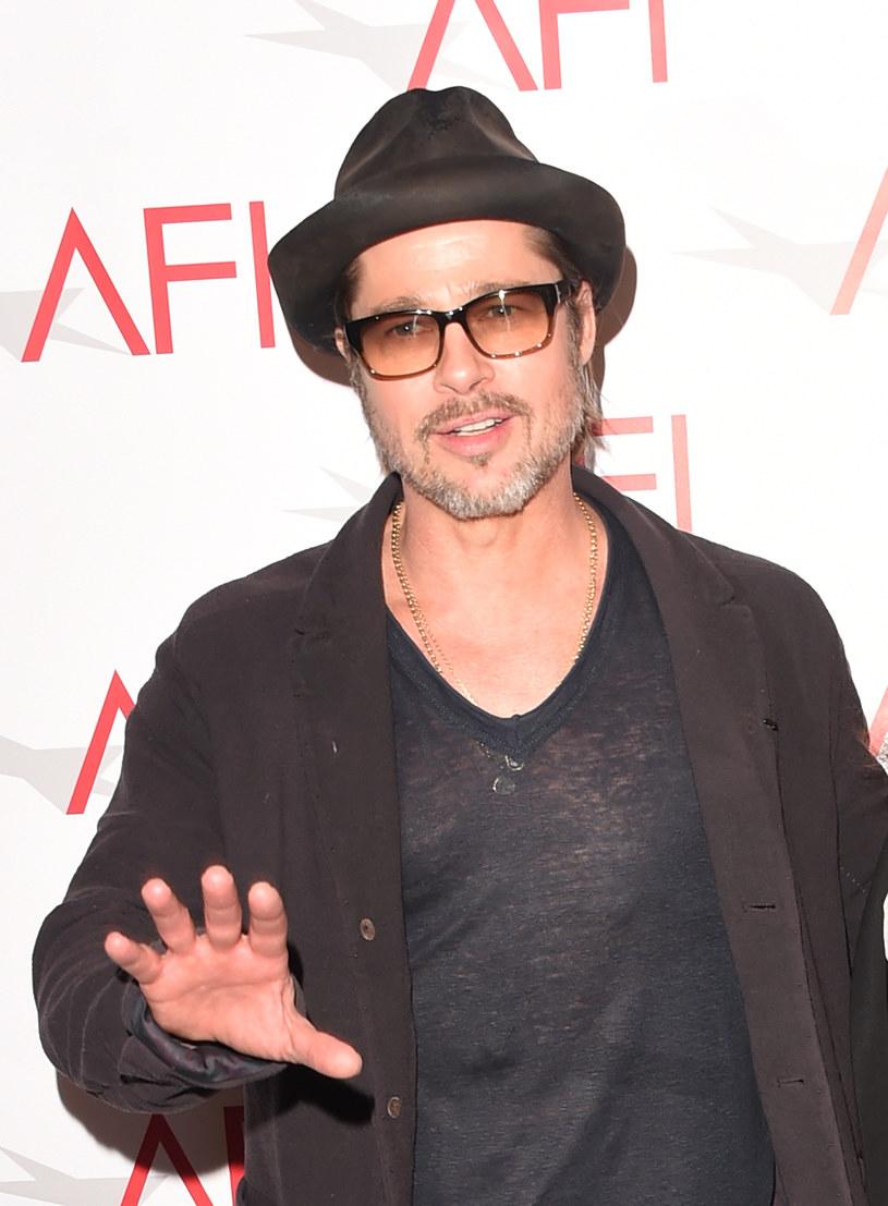 Brad Pitt jest biseksualny?! /Jason Merritt /Getty Images
