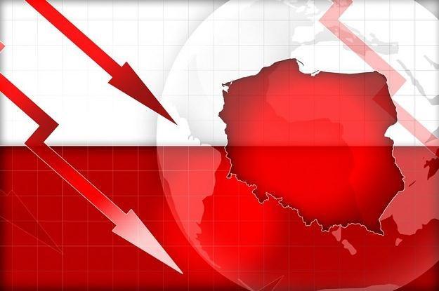 Brak euro na razie pomaga naszej gospodarce /©123RF/PICSEL