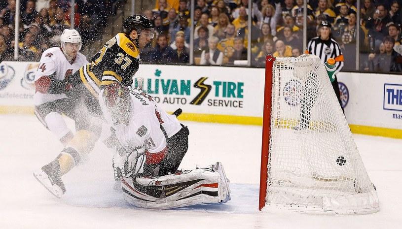 Bramkarz Ottawa Senators Craig Anderson /AFP