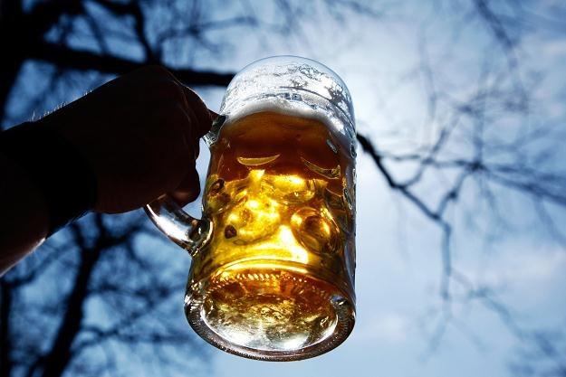 Branża piwna notuje najlepsze wyniki od trzech lat /AFP