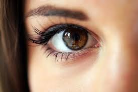 Brązowe oczy /© Photogenica
