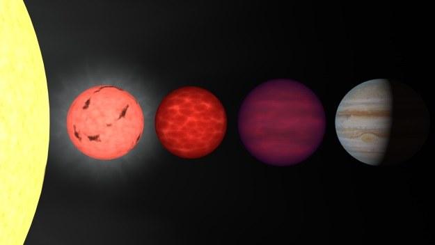 Brązowy karzeł drugi od prawej, najbardziej z prawej Jowisz /NASA