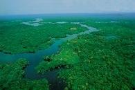 Brazylia, Amazonia /Encyklopedia Internautica