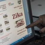 Brazylia: Koniec stanu zagrożenia związanego z wirusem Zika