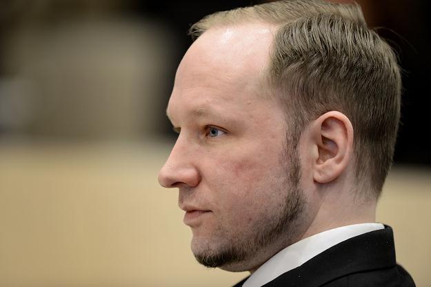 Breivik na sali sądowej /AFP