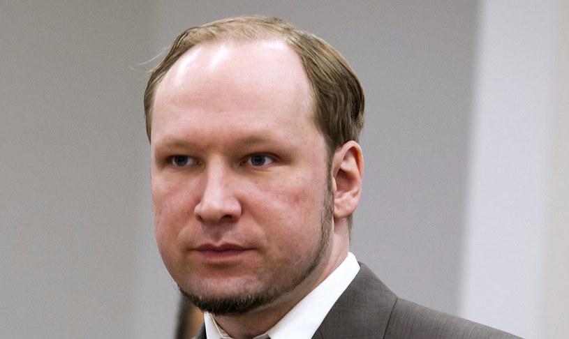 Breivik uważa się za więźnia politycznego. /AFP