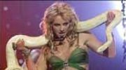 Britney Spears nie rozbierze się dla zwierząt