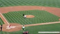 Bruce Willis został wygwizdany podczas meczu baseballu