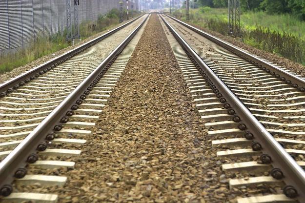 Brud jest jednym z najpoważniejszych problemów kolei w Polsce /©123RF/PICSEL