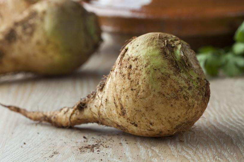 Brukiew - korzeń warzywa z rodziny kapustowatych /123RF/PICSEL
