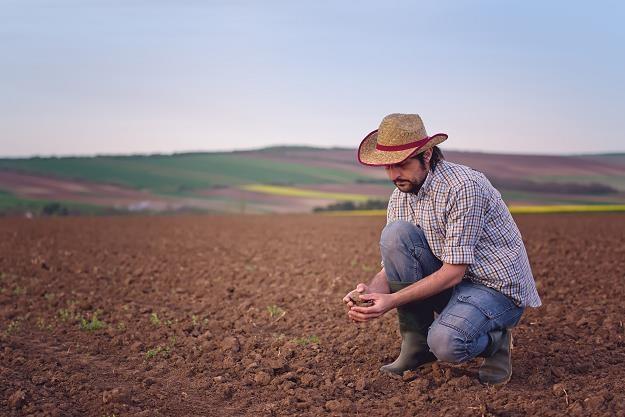 Bruksela bierze się za ziemię rolną. Polska na celowniku... /©123RF/PICSEL