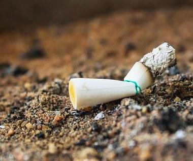 Bruksela: Surowsze kary za zaśmiecanie, 200 euro za wyrzucenie gumy czy niedopałka