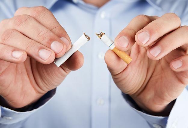 Bruksela uderza w polski tytoń... /©123RF/PICSEL