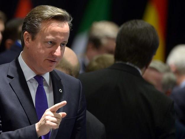 Brytyjski premier David Cameron /Rainer Jensen /PAP/EPA