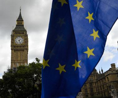 Brytyjski rząd chce wspólnego rynku dóbr i partnerstwa celnego z UE