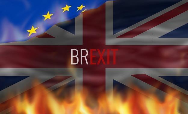 Brytyjskie propozycje mogą szokować /©123RF/PICSEL