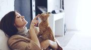 Budowanie więzi z kotem