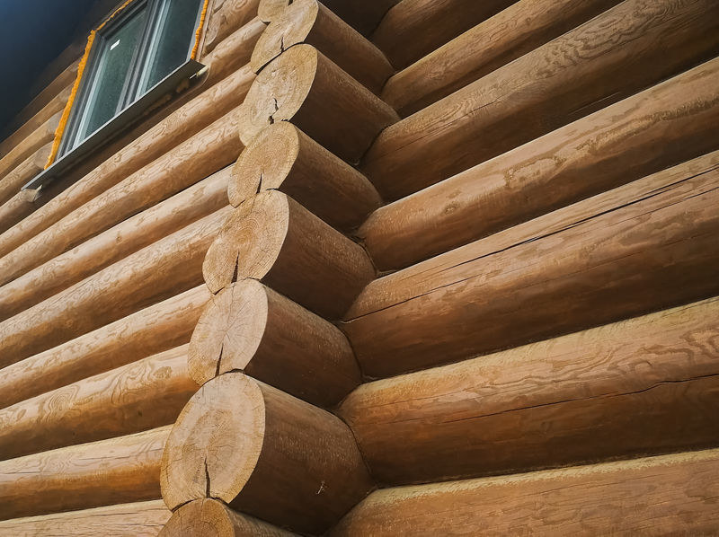 Budownictwo z drewna z trudem zdobywa popularność /123RF/PICSEL