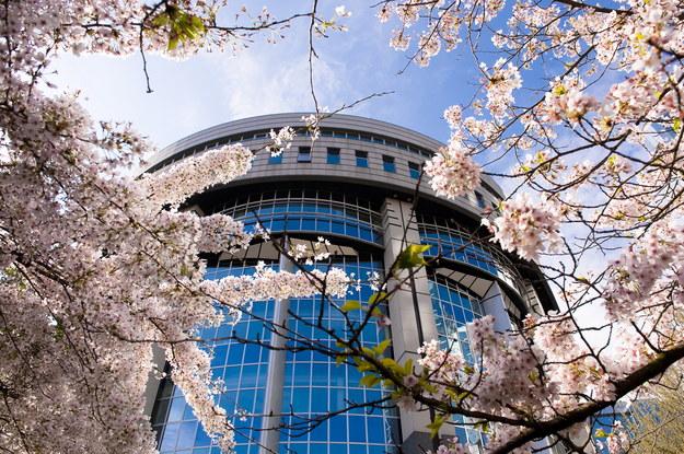 Budynek parlamentu europejskiego w Brukseli /PAP/Wiktor Dąbkowski /PAP